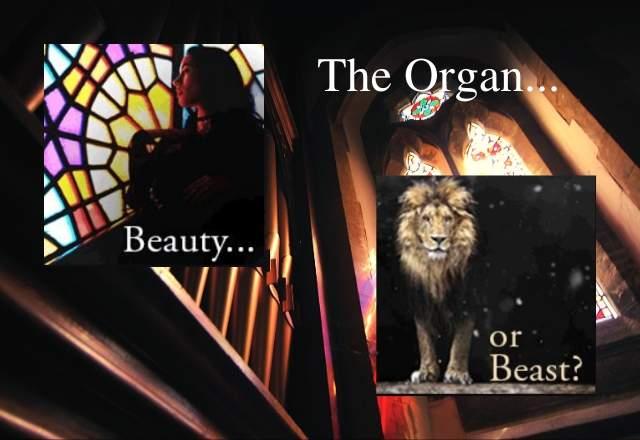 The Organ - Beauty or beast